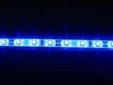 LED pásek 5cm do exteriéru - modrý